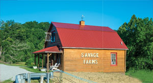 Savage Farms for Web